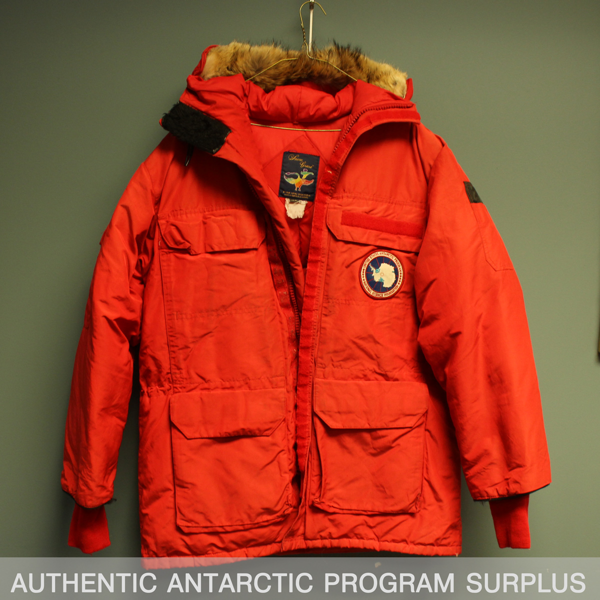 canada goose big red